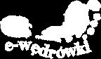 e-wędrówki portal mapowy logo